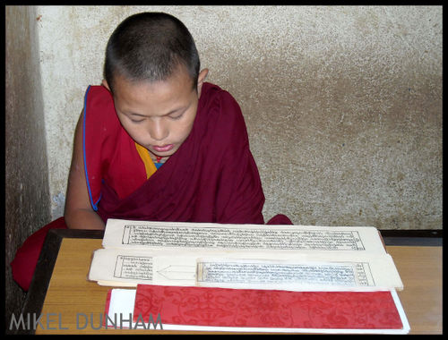 -TP-35-boy monk reading-150