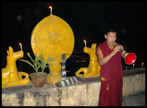 3-5-lama at night-candles